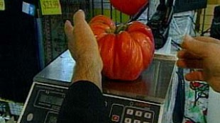 Tomatoes Won't Ward Off Prostate Cancer: Study