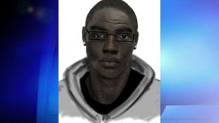 Toronto police seek suspects in May 19, 2014 sex assault. HANDOUT/Toronto Police Service