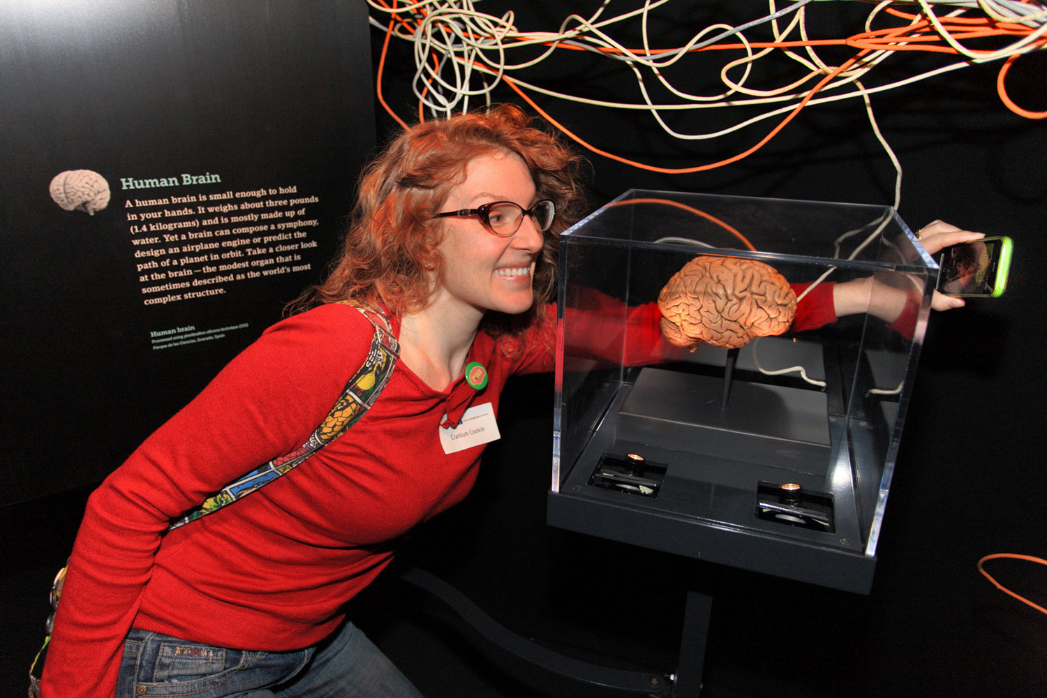 "Visitors take part in the ""Brain: The Inside Story"" exhibit. COURTESY: Ontario Science Centre"