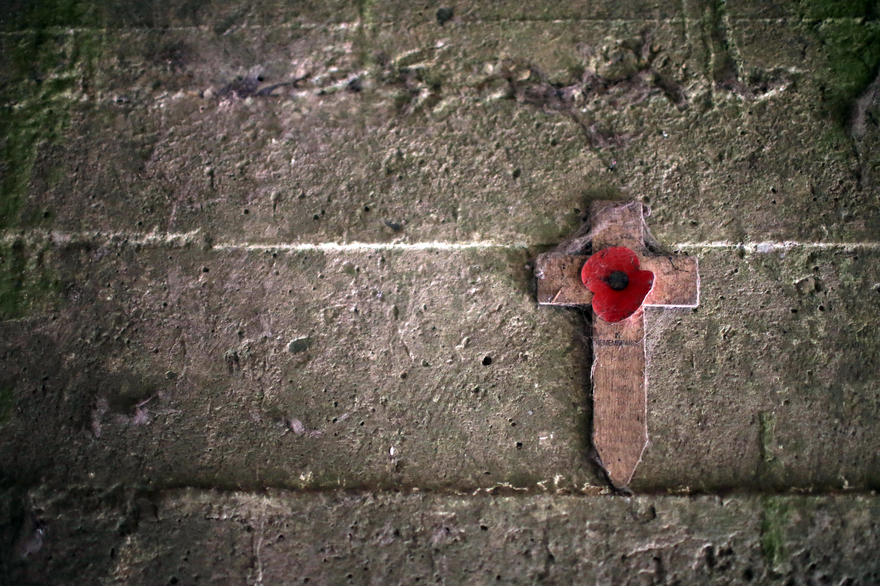 Wartime Poem In Flanders Fields Still Holds Meaning Today