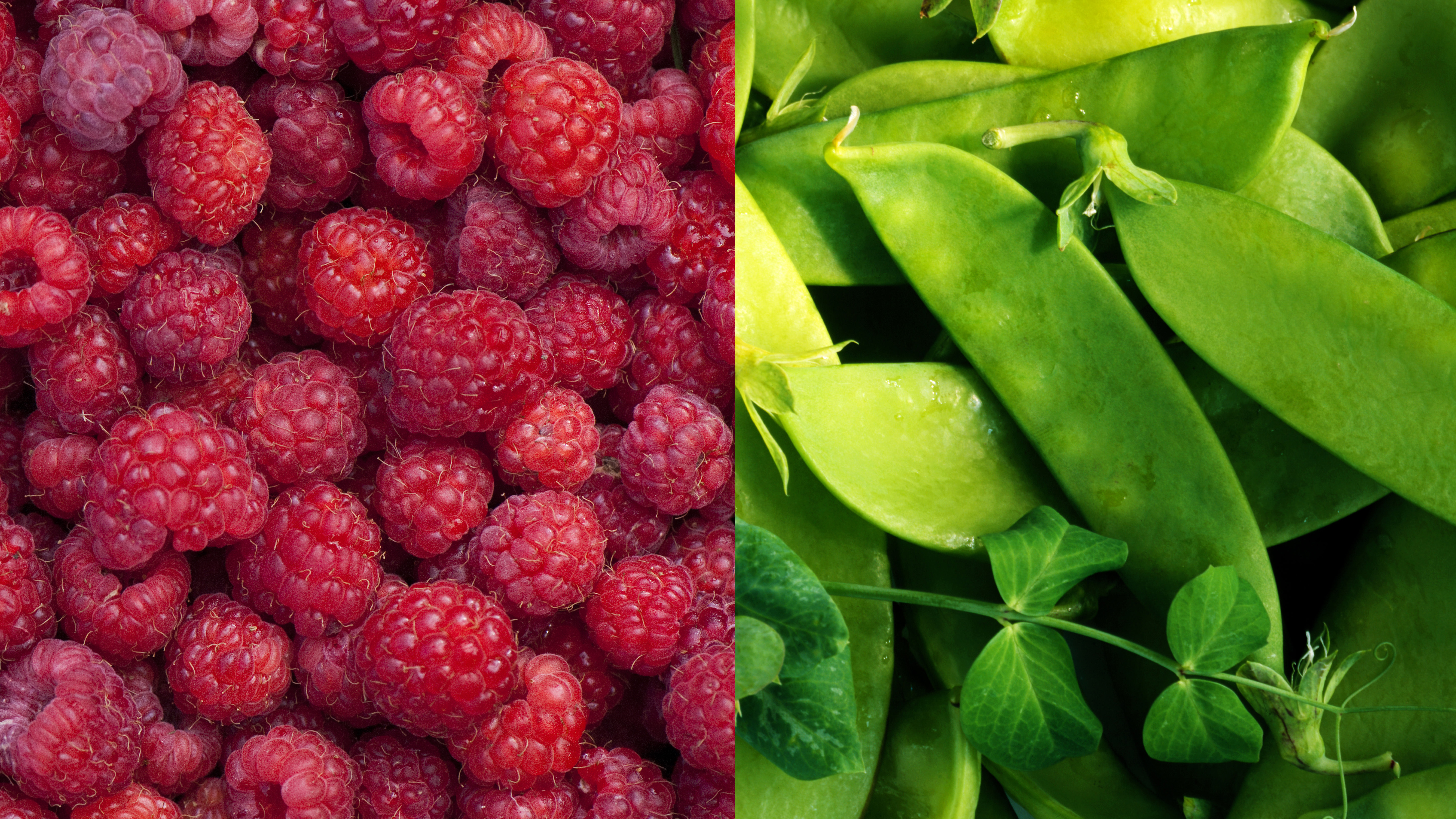 File photo of raspberries and snow peas. GETTY IMAGES.