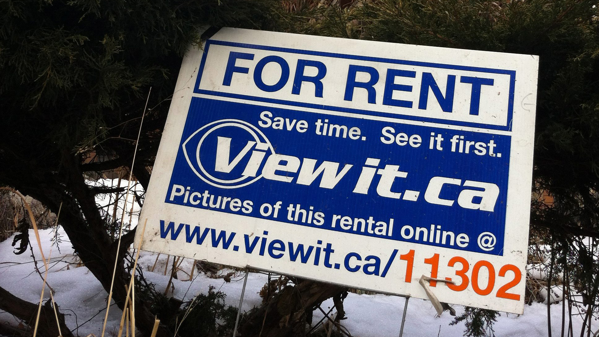 Know Your Rights Five Things New Tenants Need To Know Citynews