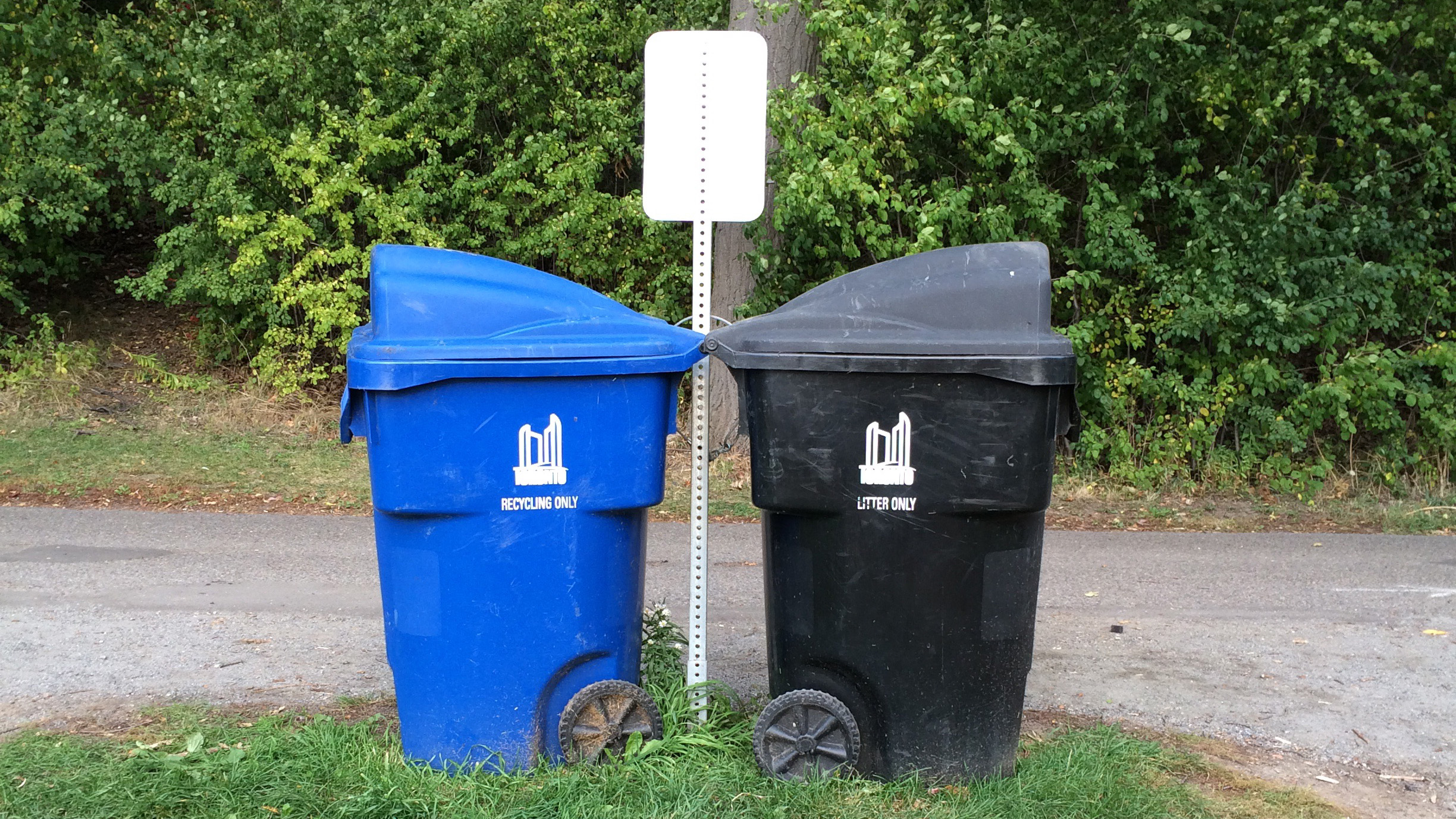 A blue bin and a black bin are seen in High Park on Oct. 14, 2015. Image courtesy CityNews viewer Astrida Liepins.