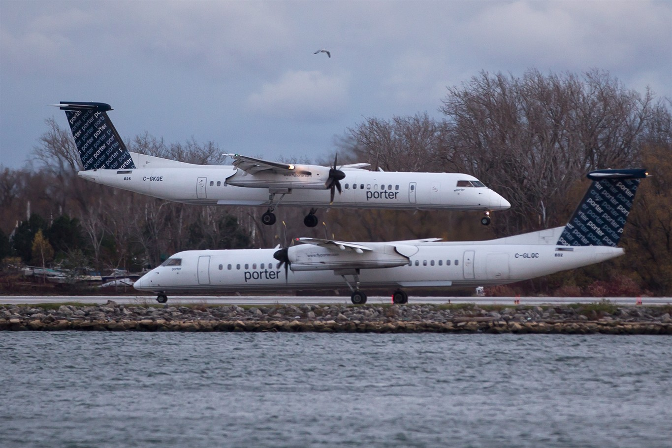 Porter Airlines Partners With Aeroplan