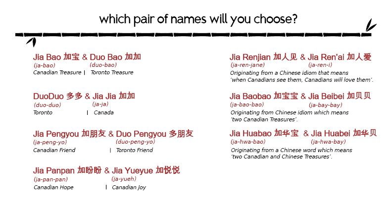 what s in a name choose your favourite for the giant