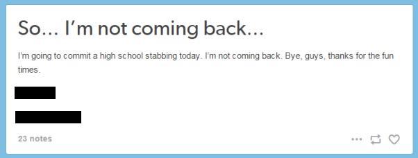 High school stabbing suspect posts