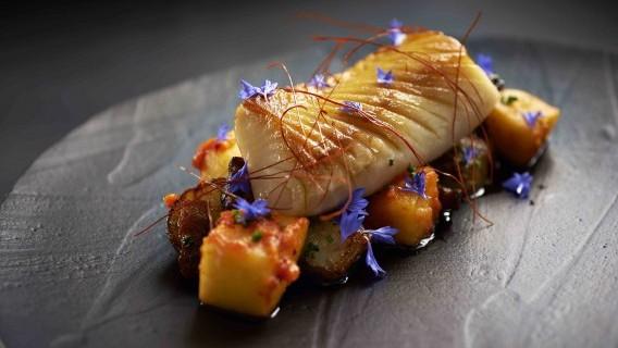 Sablefish-sunchoke-kimchiapple-bacon-citrusmustard-570x360