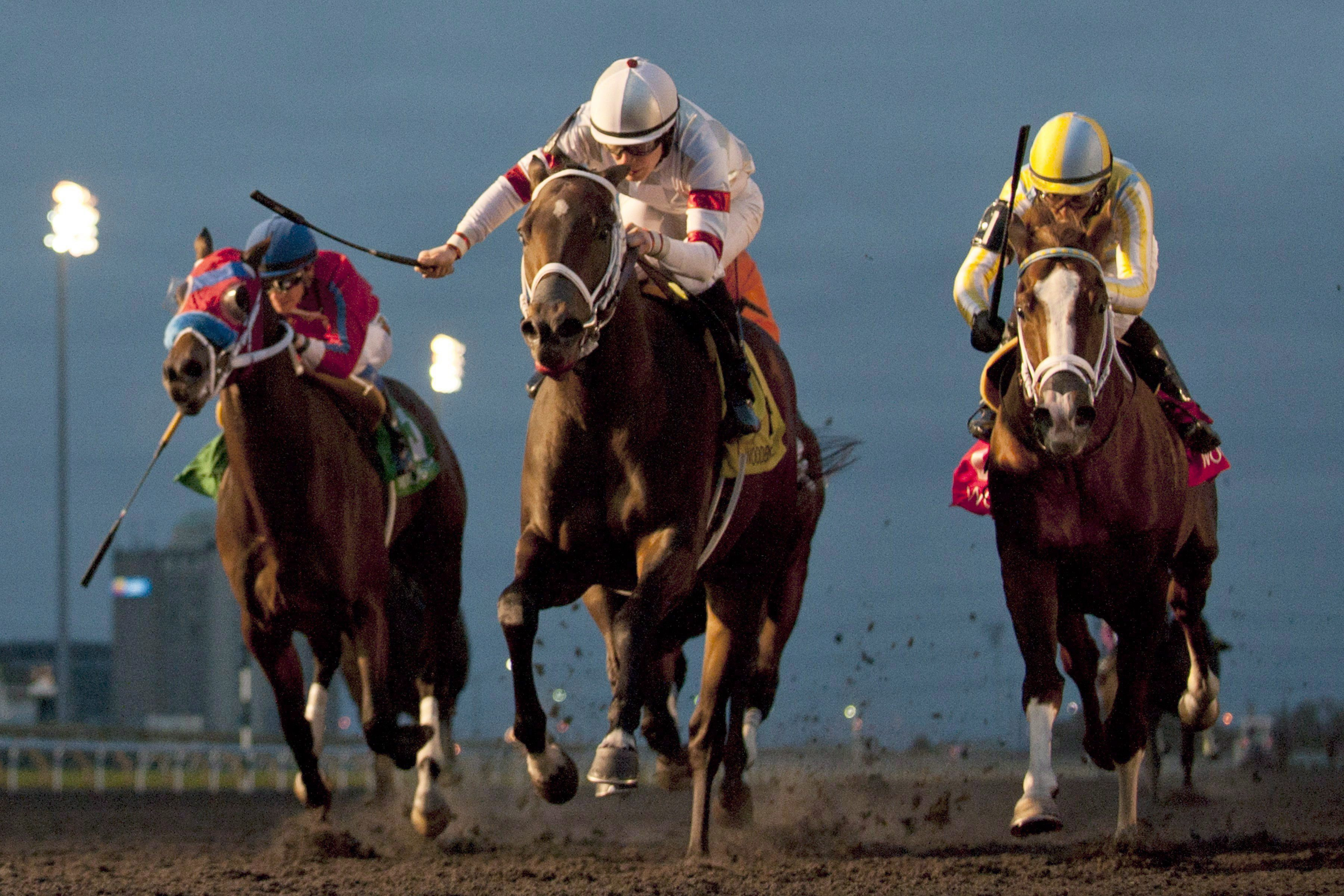 Changing Directions:Woodbine Experiments With Clockwise
