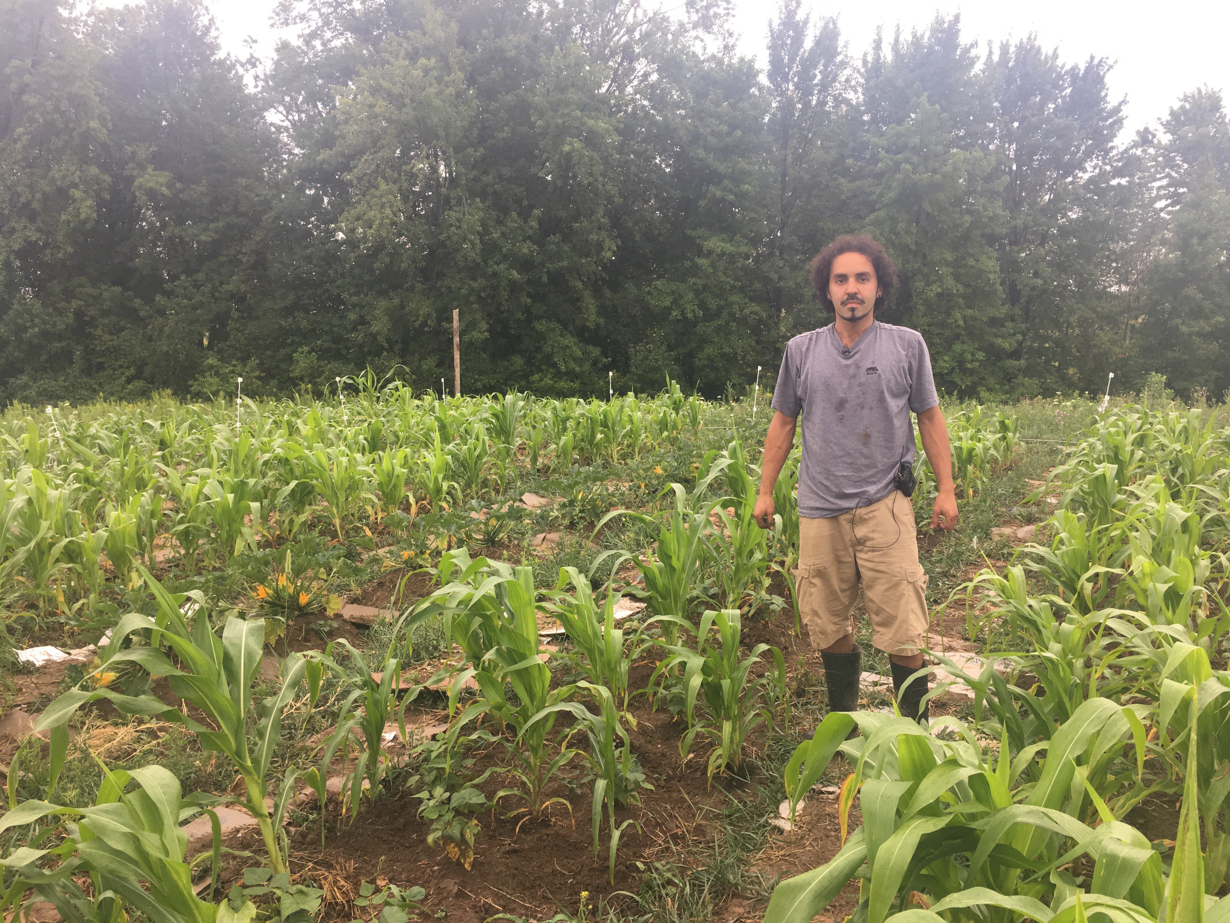 From farm labor to farm owner