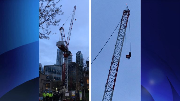 crane-rescue-april26-768x432