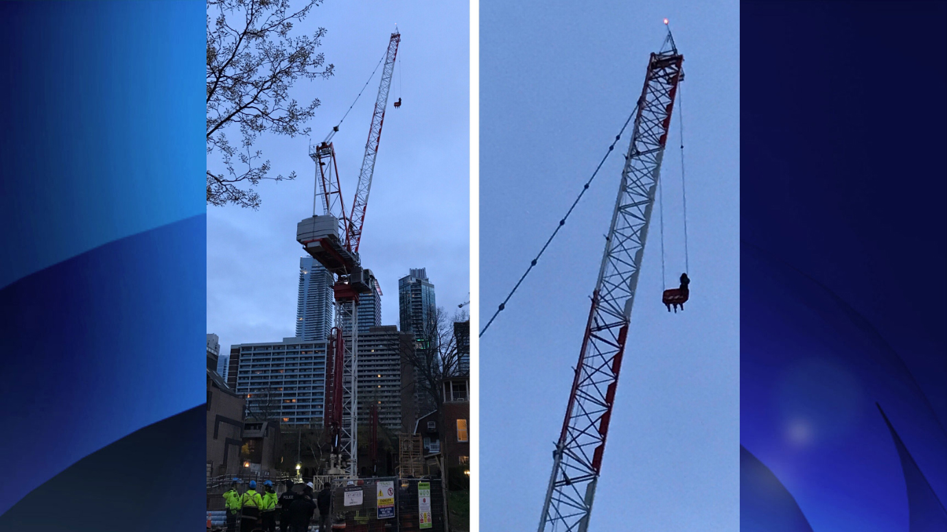 Emergency crews rescue a woman from a crane near Yonge and Wellesley streets on April 26, 2017. CITYNEWS/Melanie Ng