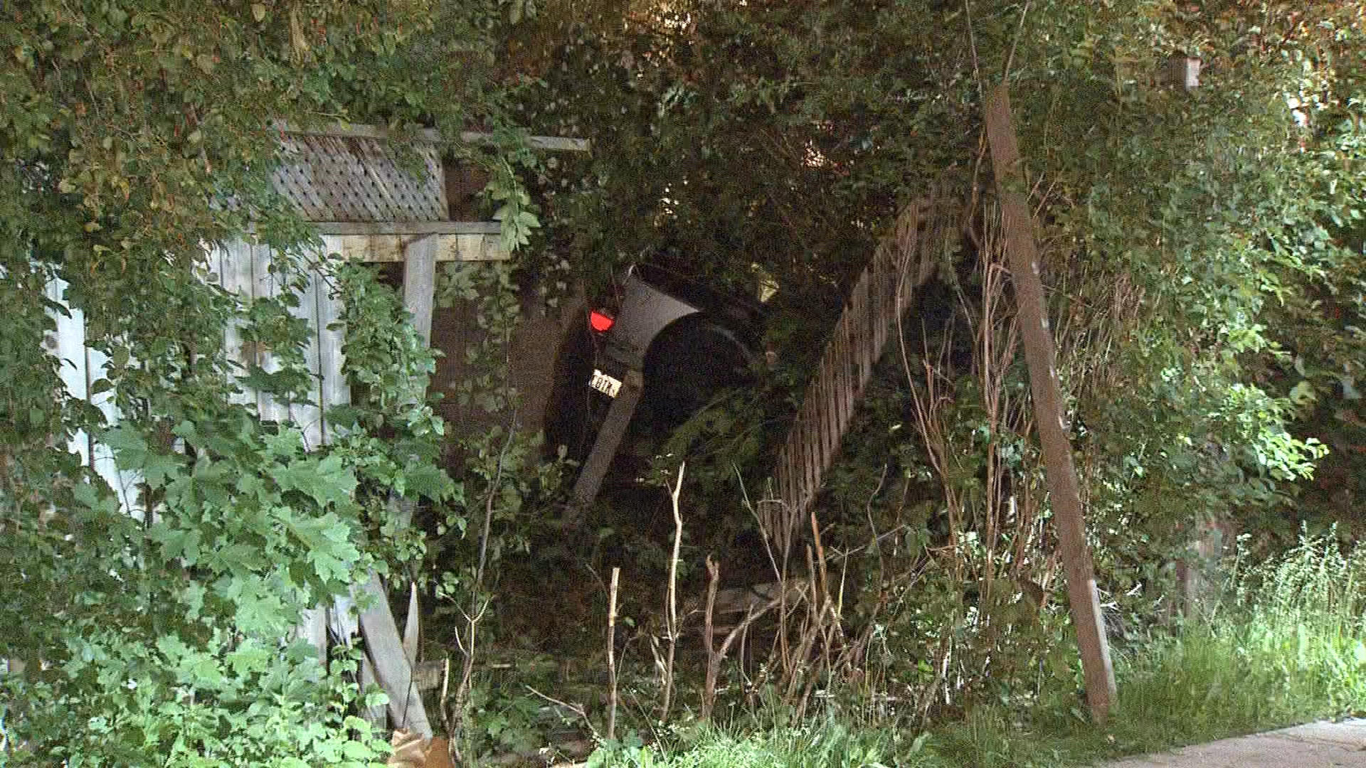 A car crashed through a fence and into a home in North York on June 16, 2017. CITYNEWS