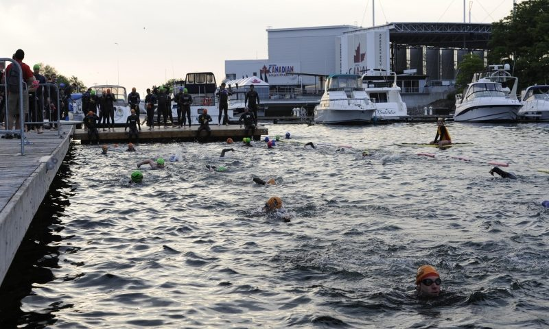 The swimming portion of the Toronto Triathlon Festival. Photo credit: torontotriathlonfestival.com