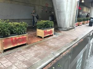Profane graffiti sprayed across planter boxes installed in front of the Tim Hortons on Victoria Street