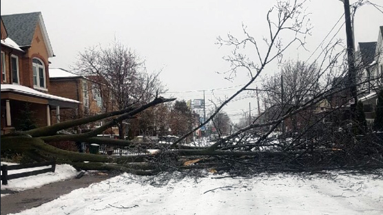 Winter Storm Southern Ontario: Strong Winds Wreak Havoc As Southern Ontario Winter Storm