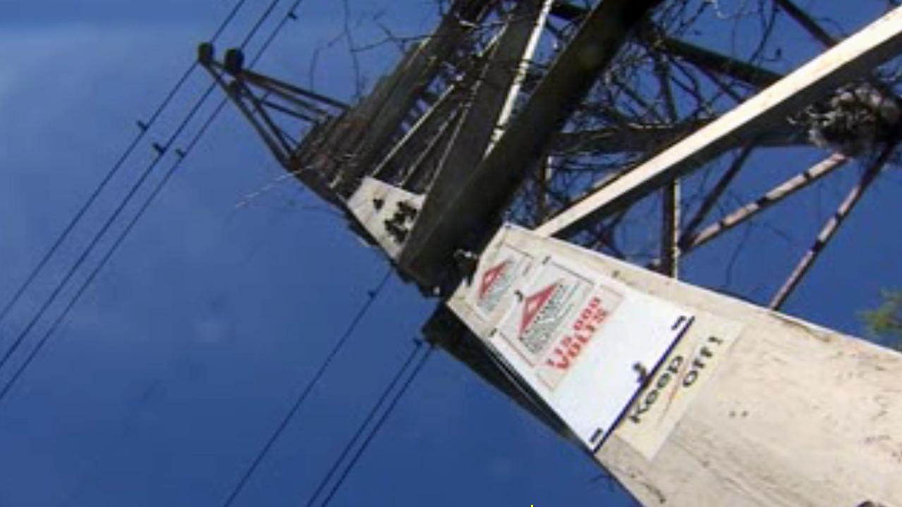 Man Dies After Climbing Hydro Tower Citynews Toronto