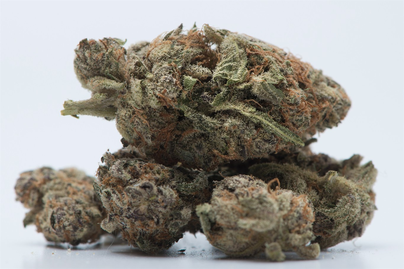Federal government to expedite pardons for minor pot convictions