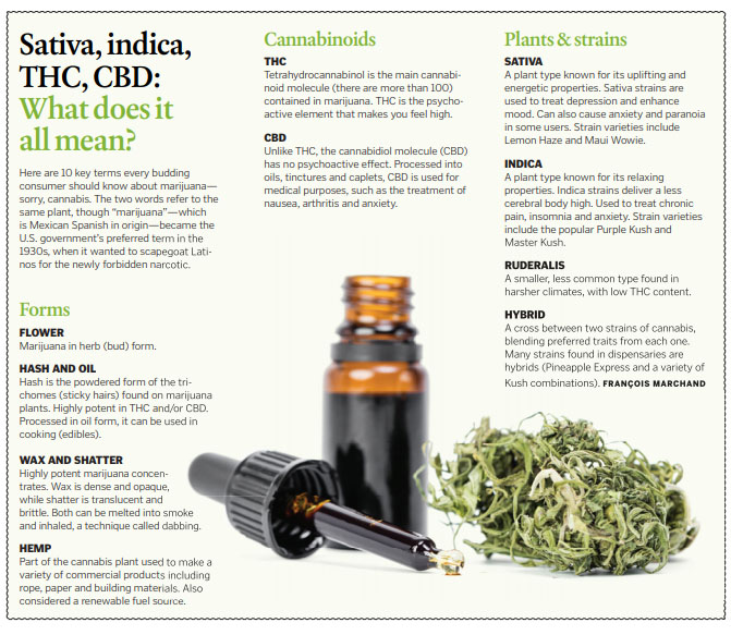 A homegrown mess: Canada ushering in legal marijuana with a