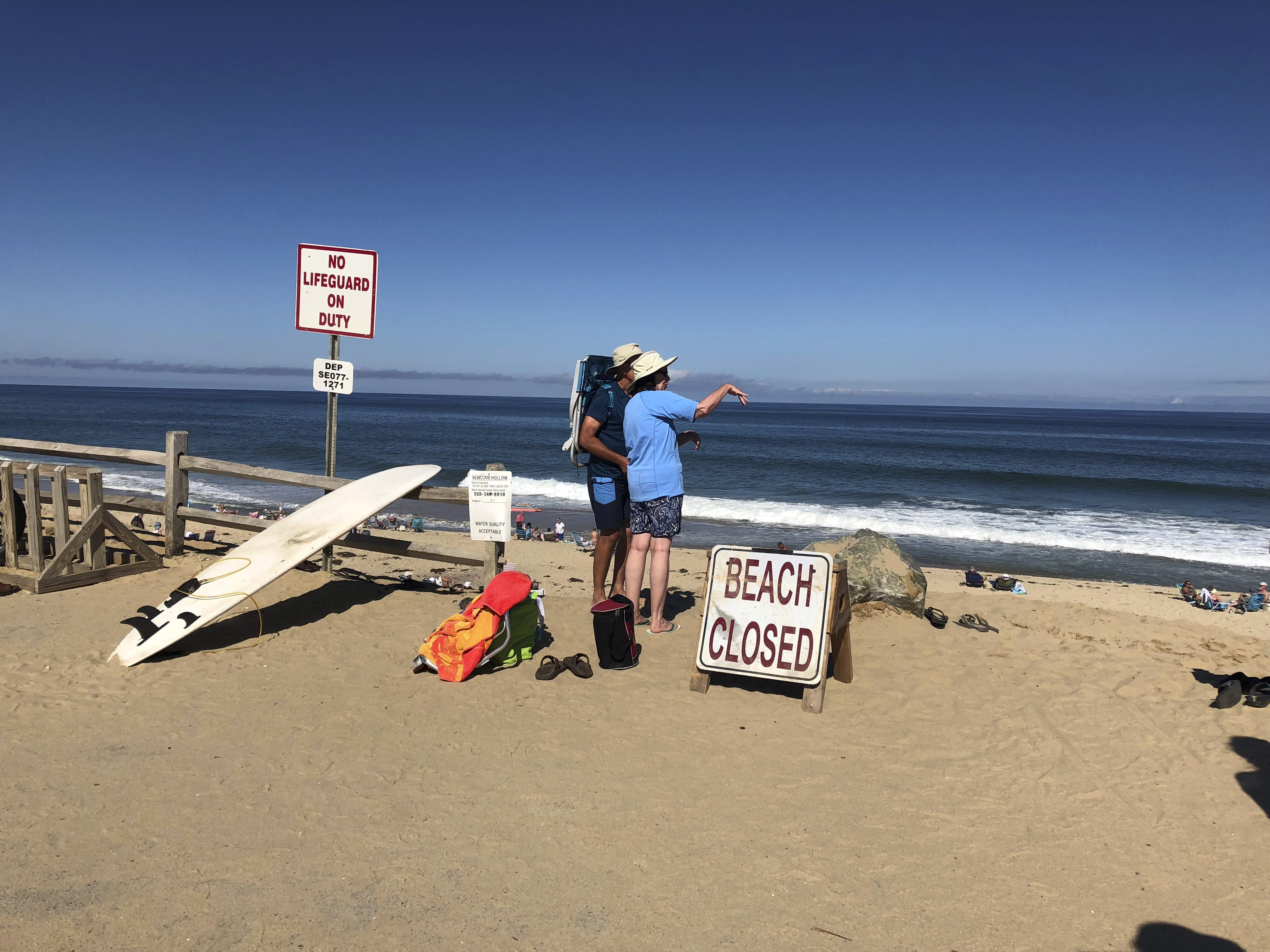 Cape Cod officials react to fatal shark attack in Wellfleet
