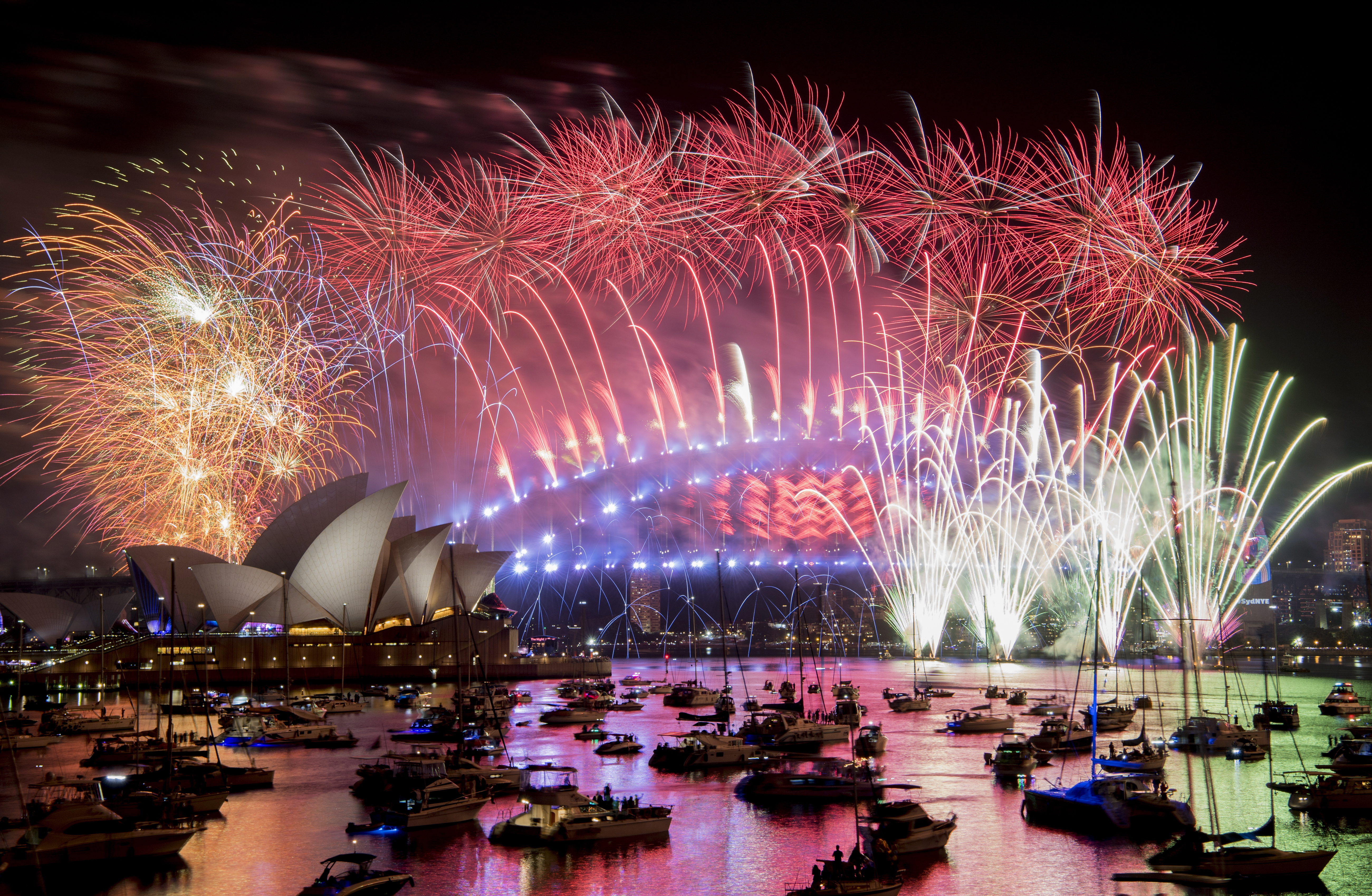 Auckland ushers in New Year with celebratory fireworks at iconic Sky Tower