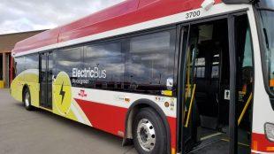 TTC electric bus
