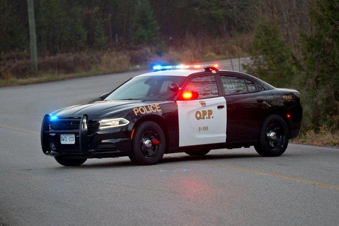 Motorcyclist killed in 4-vehicle crash on QEW